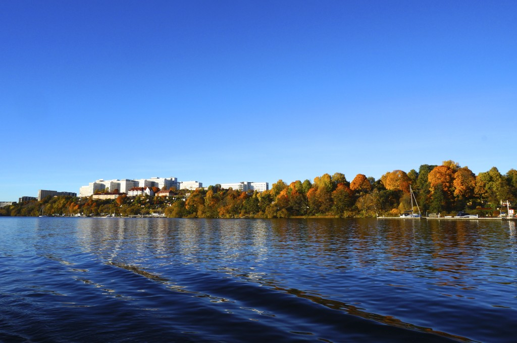 calm water, beautifully colored trees and not a single cloud in the sky. a perfect fall day in stockholm